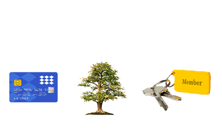 easy-to-use